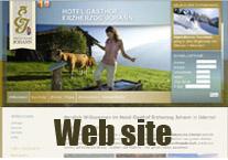 maple_web_site.jpg